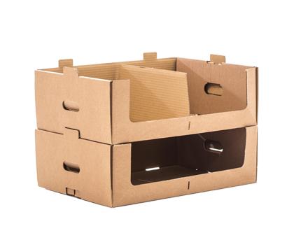 cajas standard